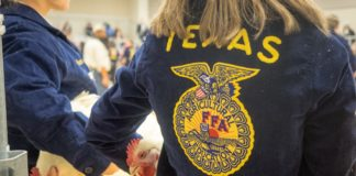 FFA Show Sets New District Record