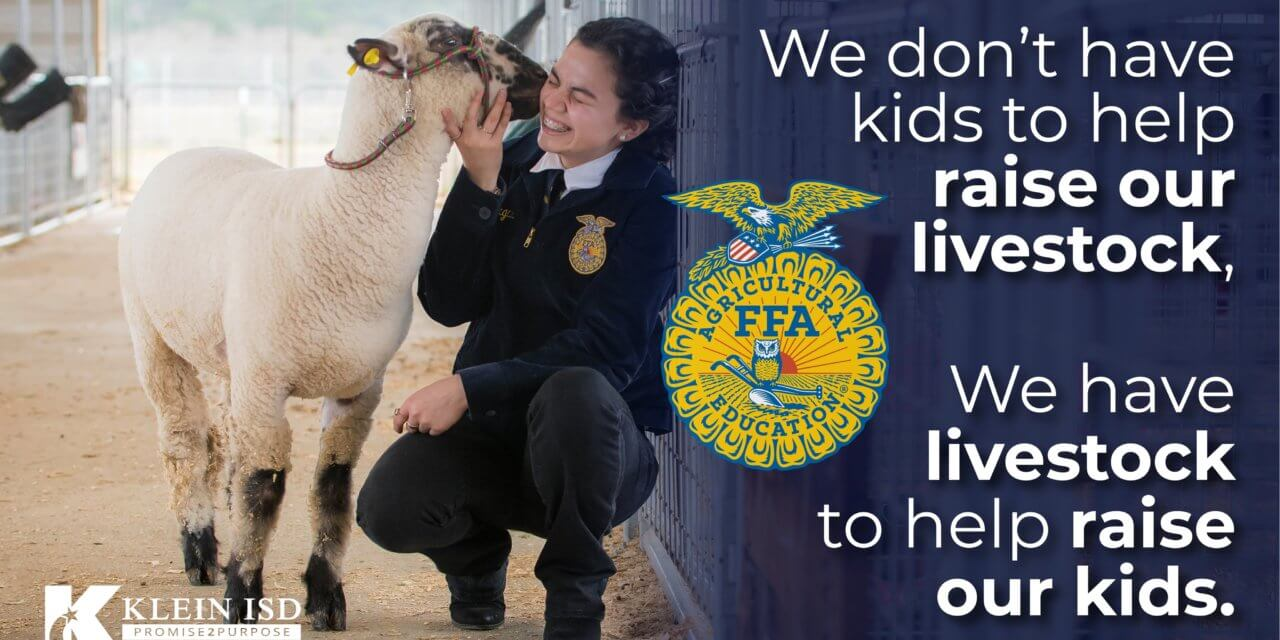 Buy a Pig, Send a Kid to College