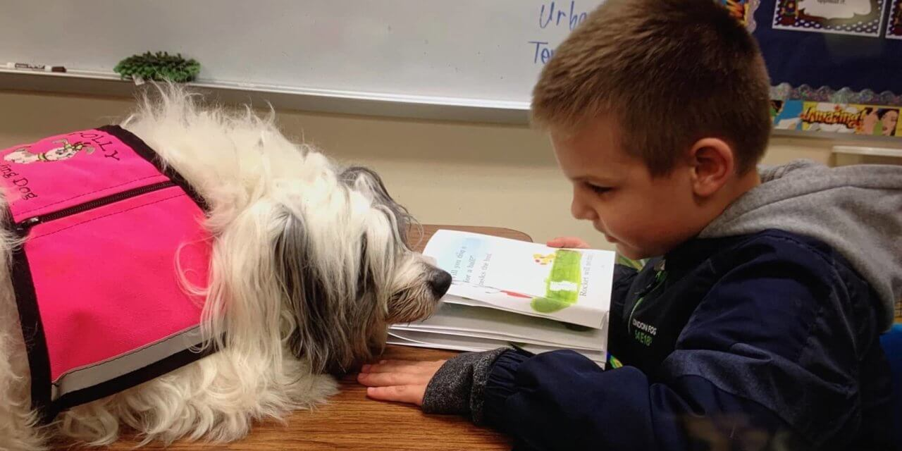 Dolly The Reading Dog: A Glimpse of a Service Dog and Her Job