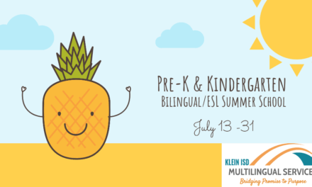 Are you Interested in Teaching PK/K Summer School?